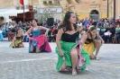 Karnival Organizzat 2016_6