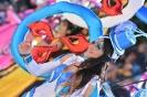 Sunday Carnival 2015_5