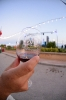 Wine Festival 2015 - Friday